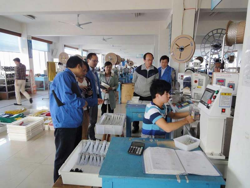 Hisense Kelon Group visited our company for inspection