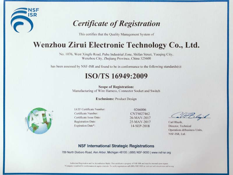 Passed ISO/TS16949 Certificate